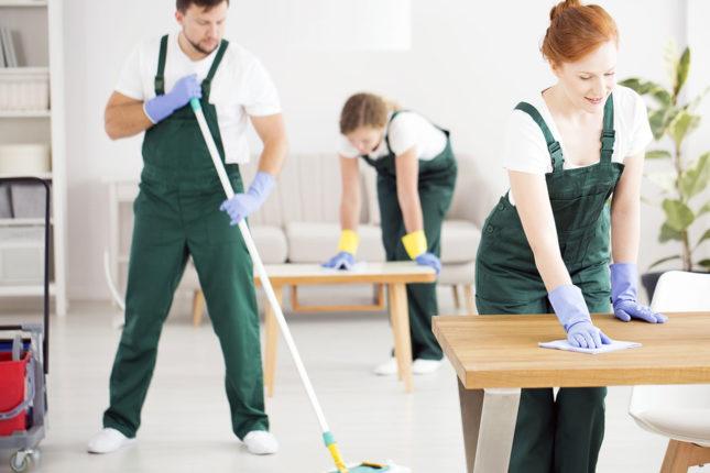 Femmes de ménage et Professionnels Titres Services